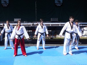 Martial Art Exibition